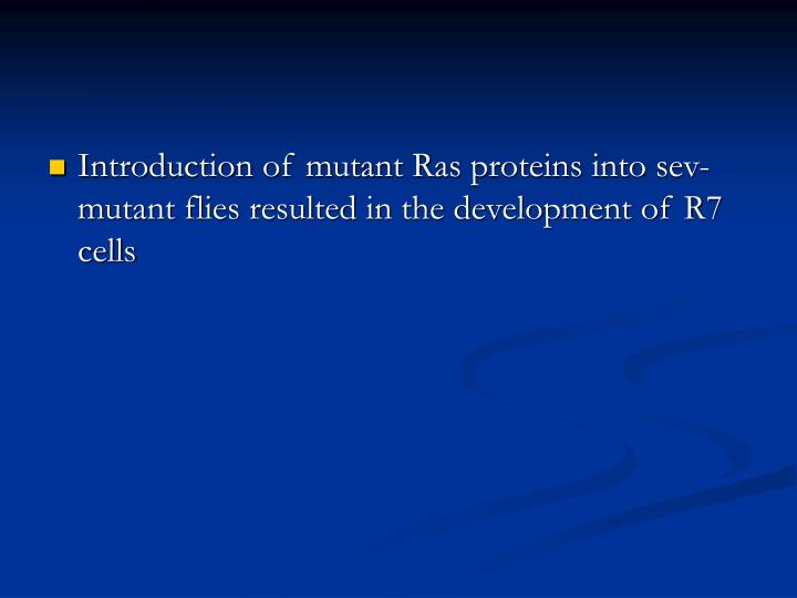 Introduction of mutant Ras proteins into sev- mutant flies resulted in the development of R7 cells