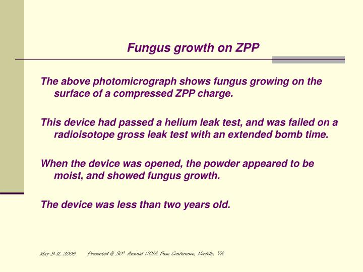 Fungus growth on ZPP