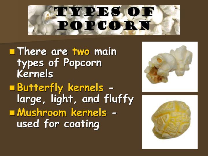 Types of Popcorn