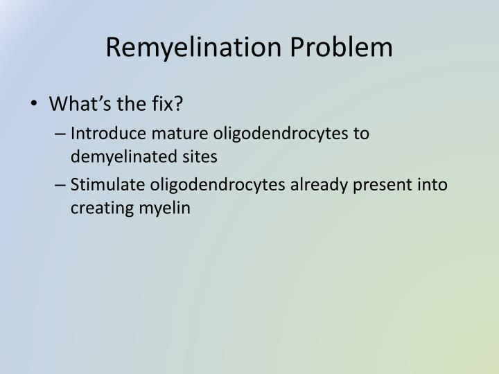 Remyelination Problem