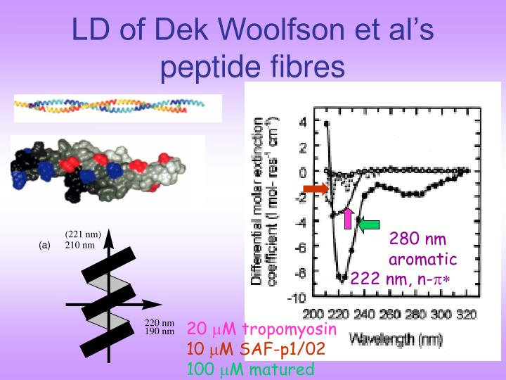 LD of Dek Woolfson et al's peptide fibres