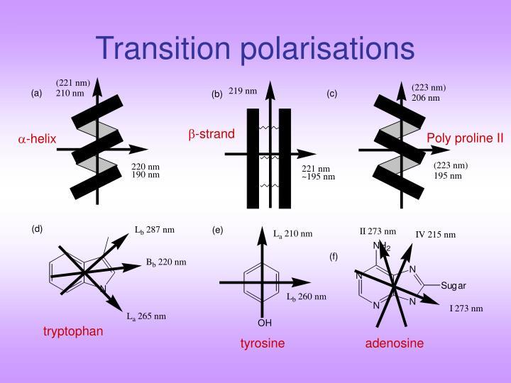 Transition polarisations