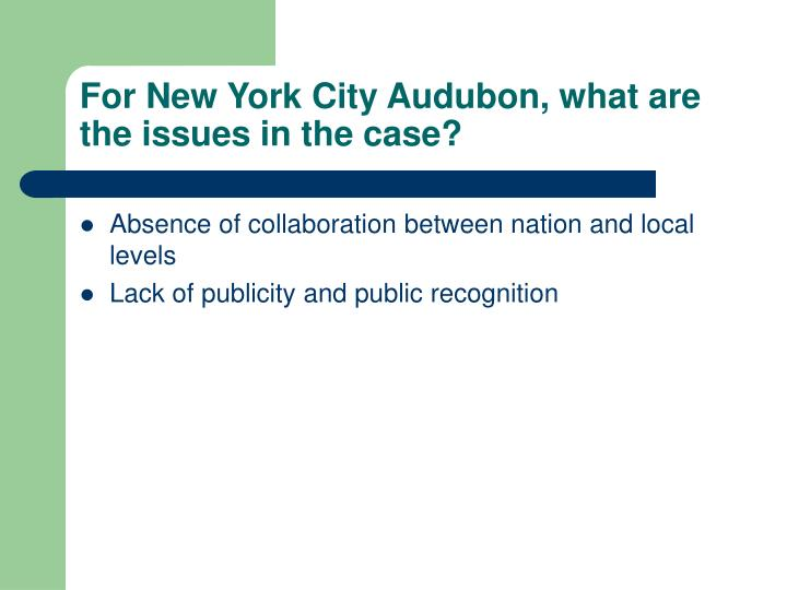 For new york city audubon what are the issues in the case