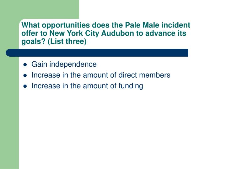 What opportunities does the Pale Male incident offer to New York City Audubon to advance its goals? ...