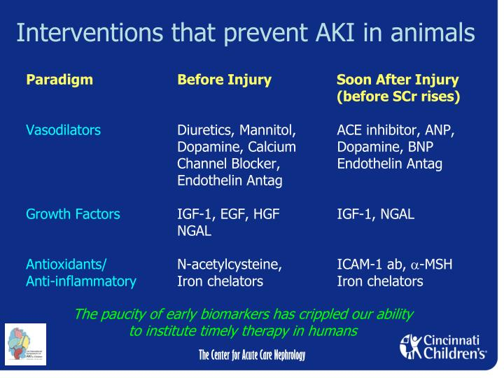 Interventions that prevent AKI in animals