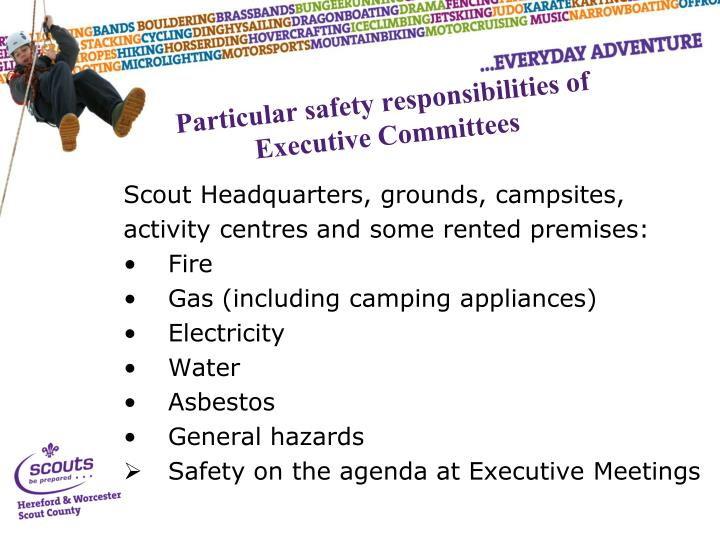 Particular safety responsibilities of Executive Committees