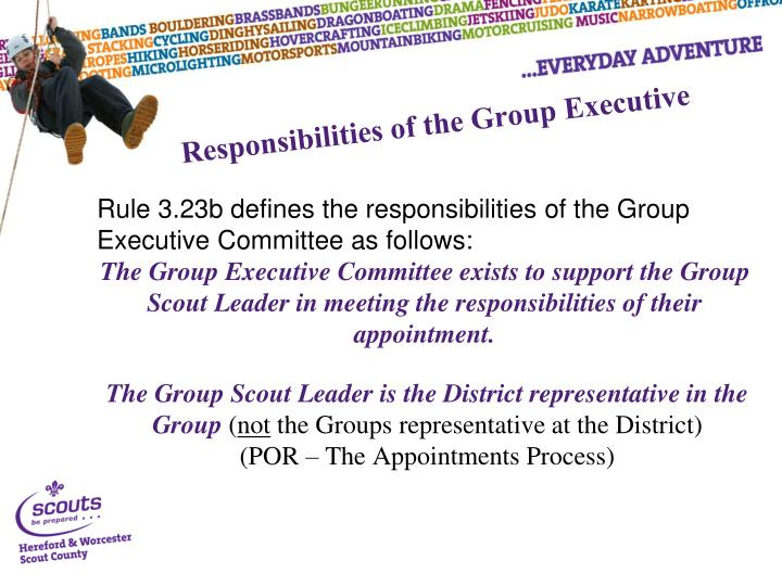 Responsibilities of the Group Executive