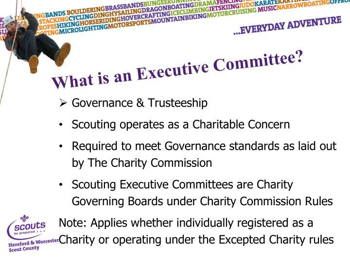 Governance & Trusteeship