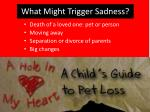 what might trigger sadness