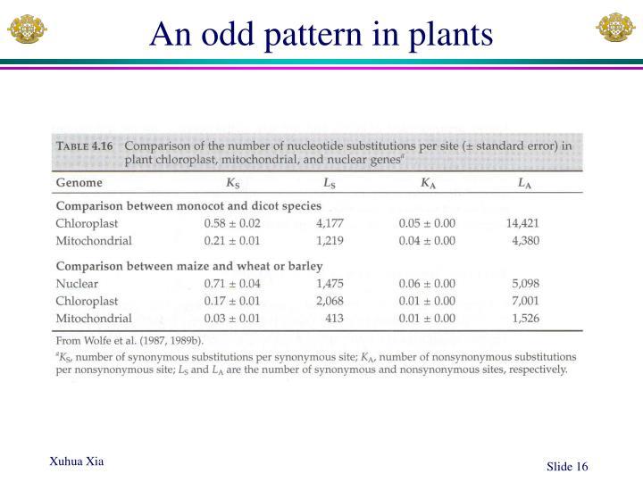 An odd pattern in plants