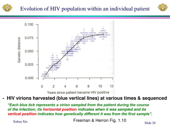 Evolution of HIV population within an individual patient