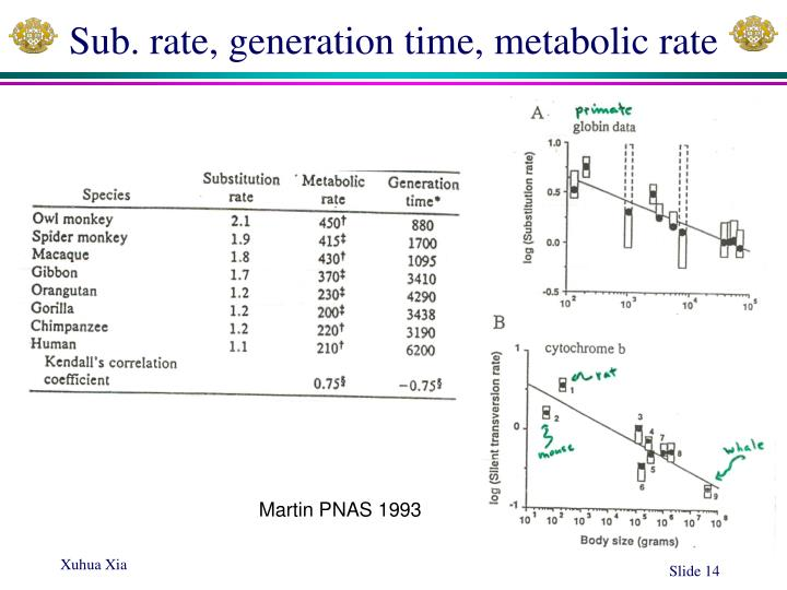 Sub. rate, generation time, metabolic rate