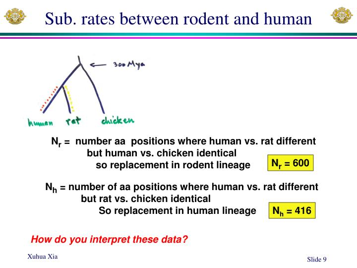 Sub. rates between rodent and human
