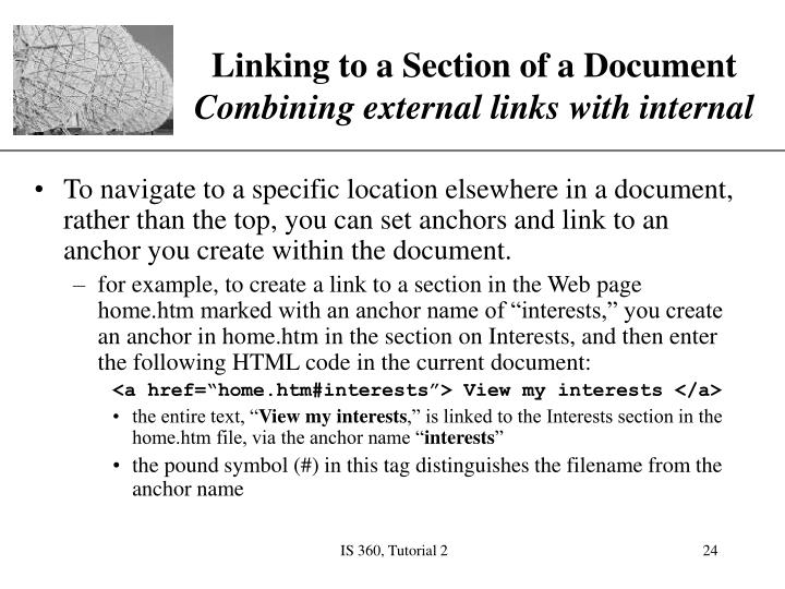 Linking to a Section of a Document
