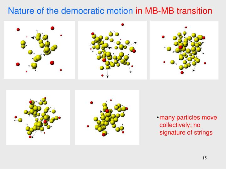 Nature of the democratic motion