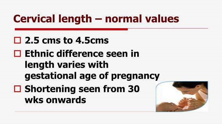 Cervical length – normal values