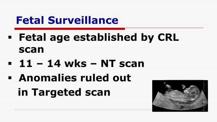 Fetal Surveillance