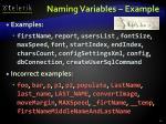 naming variables example