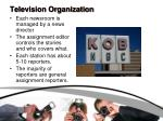 television organization