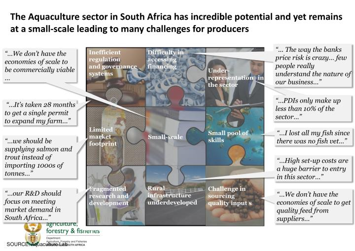 The Aquaculture sector in South Africa has incredible potential and yet remains at a small-scale leading to many challenges for producers