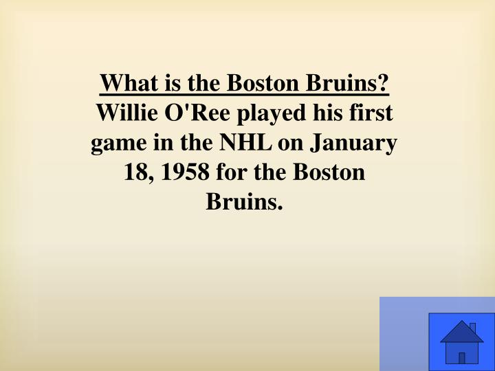 What is the Boston Bruins?