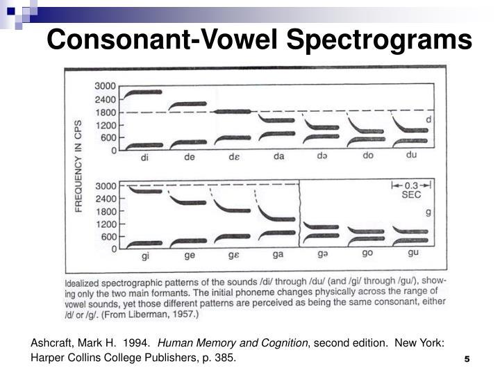 Consonant-Vowel Spectrograms