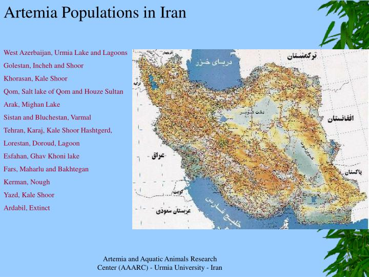 Artemia Populations in Iran