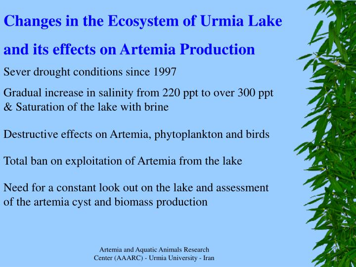 Changes in the Ecosystem of Urmia Lake