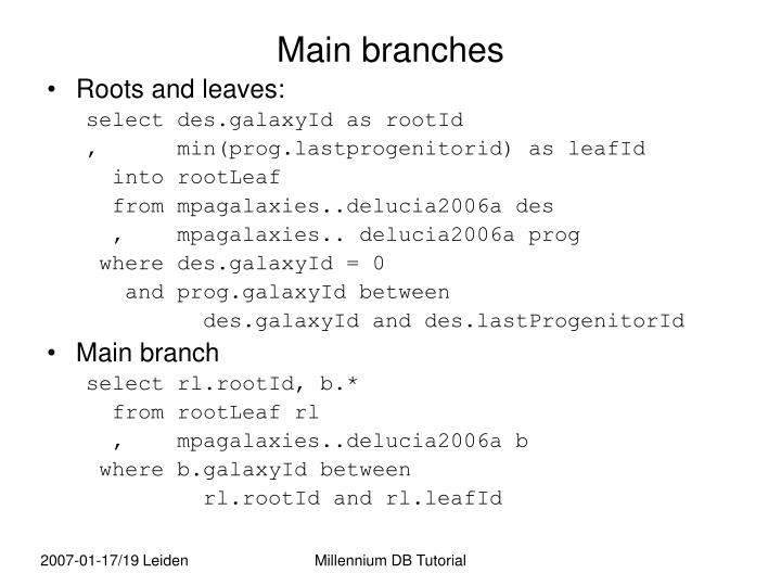 Main branches