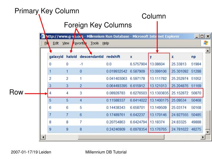Primary Key Column