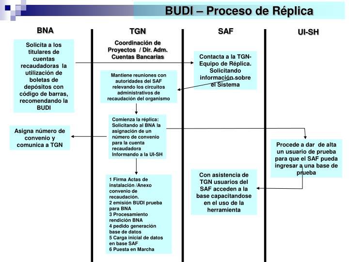 BUDI – Proceso de Réplica