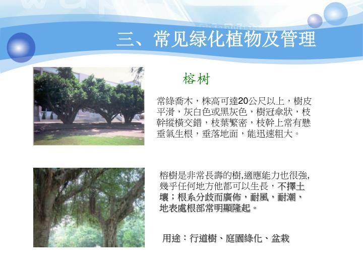 三、常见绿化植物及管理