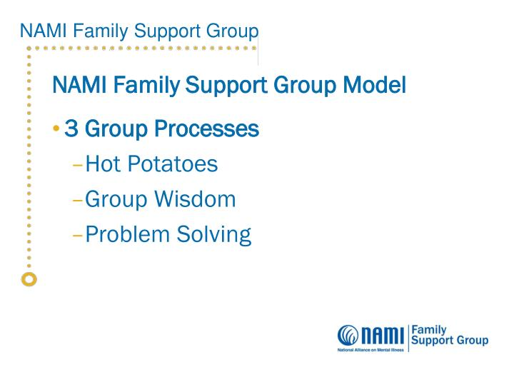 NAMI Family Support Group Model