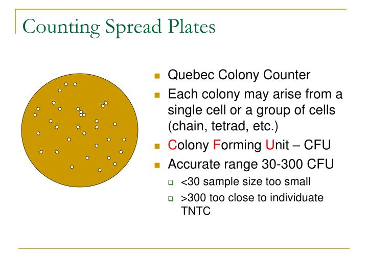 Counting Spread Plates
