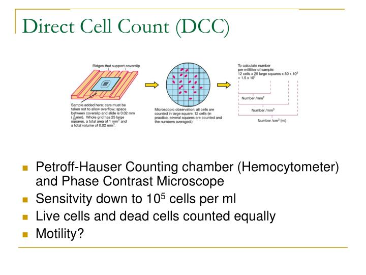 Direct cell count dcc