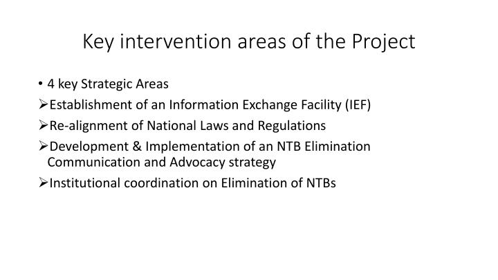 Key intervention areas of the Project