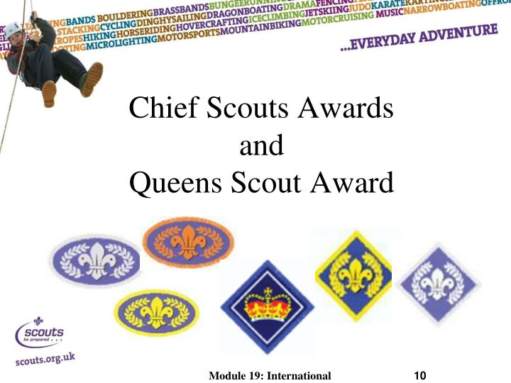 Chief Scouts Awards
