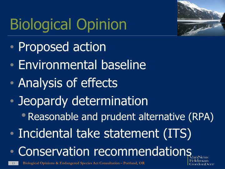Biological Opinion