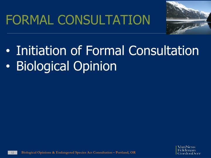 FORMAL CONSULTATION