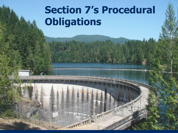Section 7's Procedural