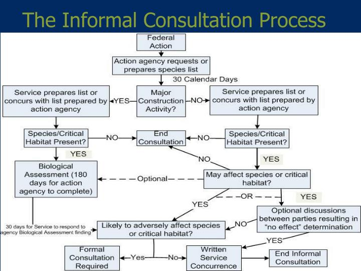 The Informal Consultation Process