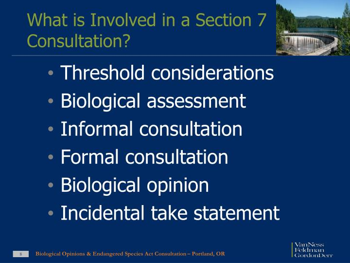 What is Involved in a Section 7 Consultation?
