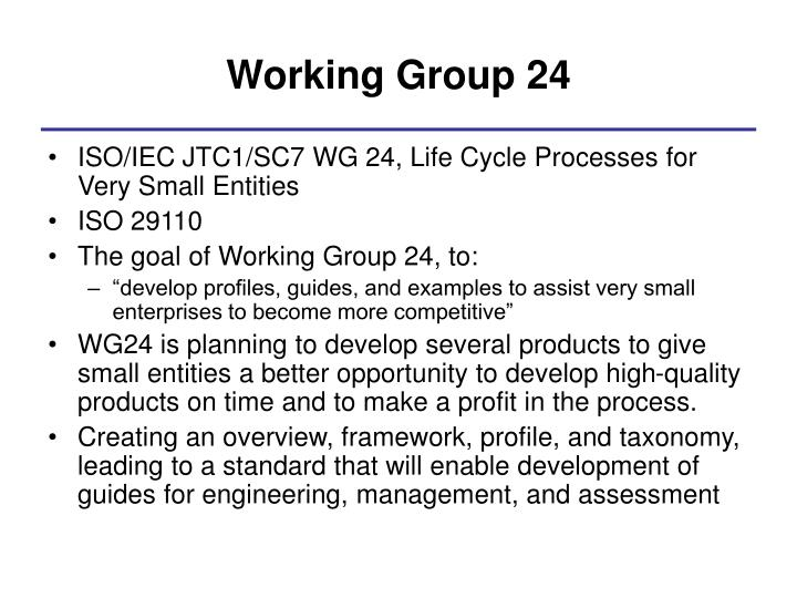 Working Group 24