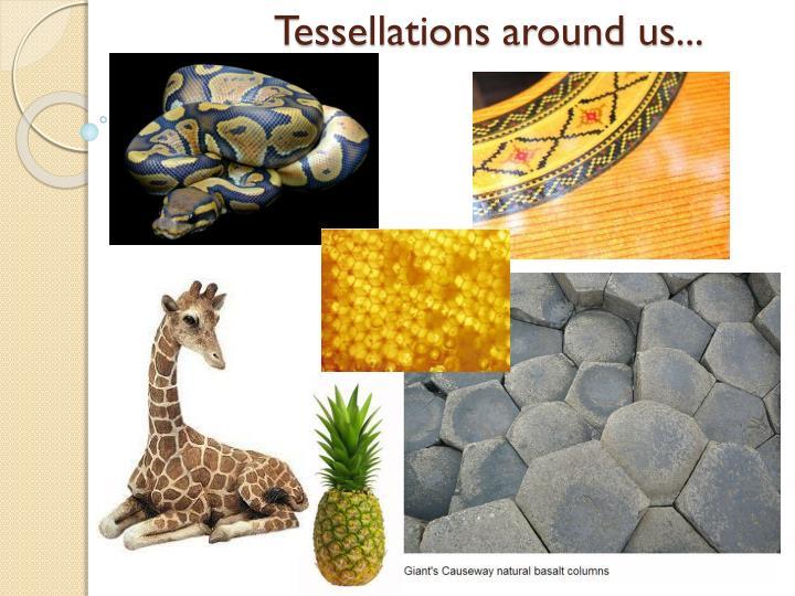 Tessellations around us...