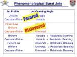 phenomenological burst jets1