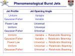 phenomenological burst jets6