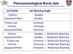 phenomenological burst jets7