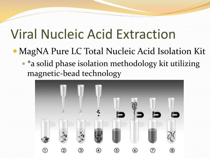 Viral Nucleic Acid Extraction