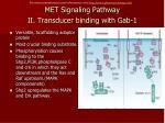 met signaling pathway ii transducer binding with gab 1