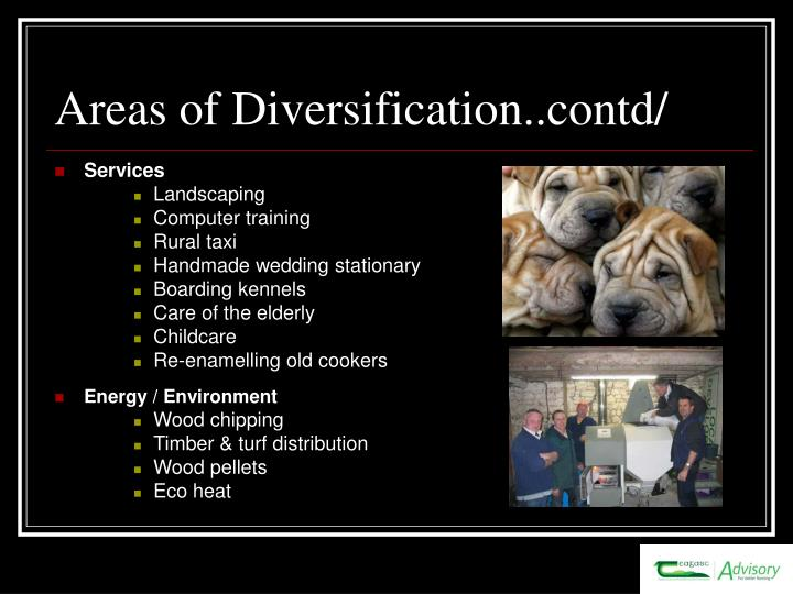 Areas of Diversification..contd/